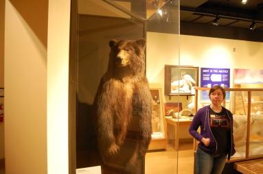 Ber and a Kodiak Bear