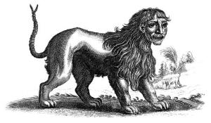 Manticore, a monster our players fought in a recent game