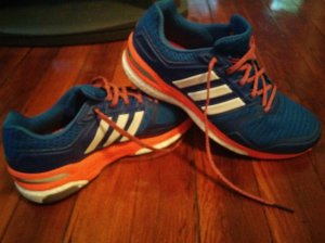 Fancy shoes are fancy. Adidas Supernova Sequence Boost 8 running shoes.