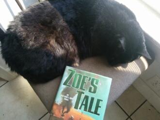 Zoe's Tale in hardcover, with avid reader cat, Bagheera